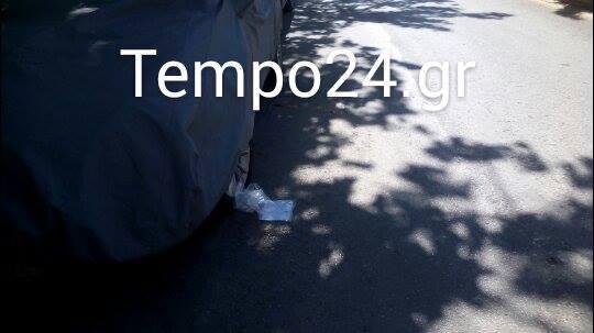 13115298_10209221863374327_1026613151_n.jpg