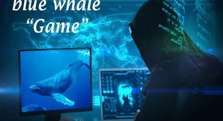 """Η """"Μπλε φάλαινα"""" στο στόχαστρο της Εισαγγελίας Ανηλίκων ..."""