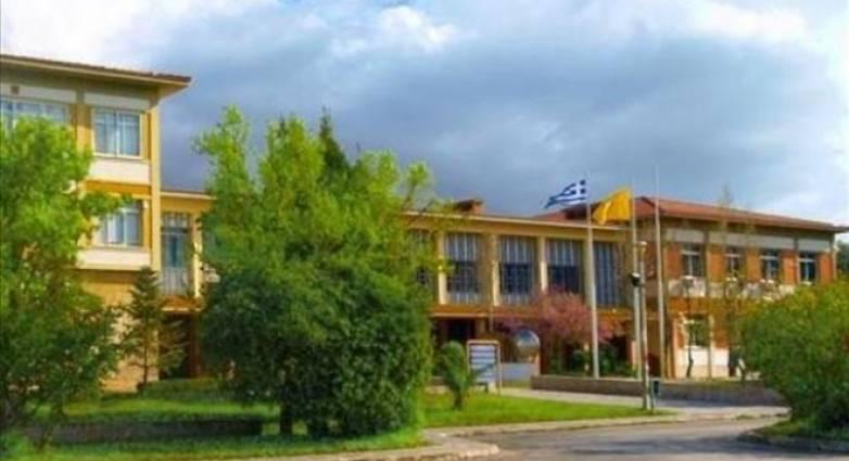 Τρεις νέες σχολές στο Πανεπιστήμιο Πατρών - Περισσότερες θέσεις για τους  μαθητές που εξετάζονται στις Πανελλήνιες | tempo24.news